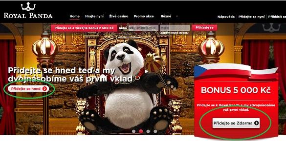 best online casino for nz